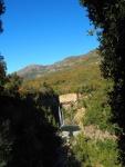 Reserva Nacional Radal Siete Tazas